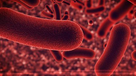 3D illustration. Bacteria virus under microscope.