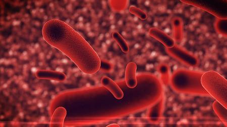 3D rendering of Bacteria virus under microscope
