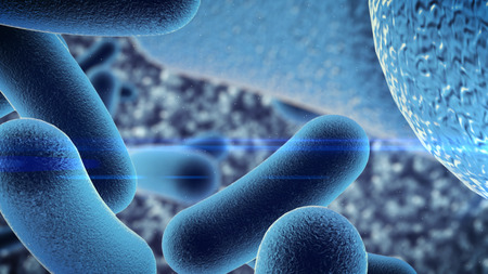 bacteria microscope: 3d rendering of a germ bacteria under microscope Stock Photo