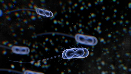 A striking 3d rendering of harmful bacteria with long and transparent tails moving in the black environment with numerous tiny and enigmatic creatures.