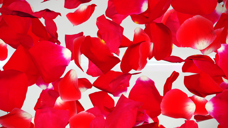 An emotional 3d illustration of flying petals of red roses in the white background. They signify deep romantic feelings, our sweethearts and Saint Valentine day!