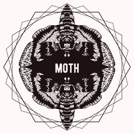 Graphic vector of moth. Illustration for print of t-shirts, mugs, pens, tattoo and other things. Vintage hand drawn line art illustration