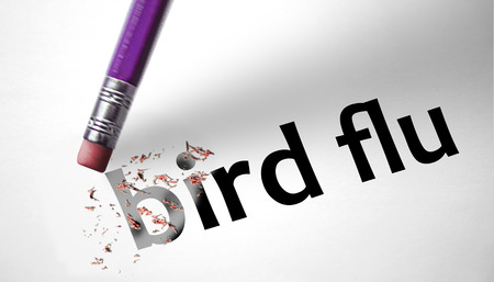 ah1n1: Eraser deleting the word Bird Flu