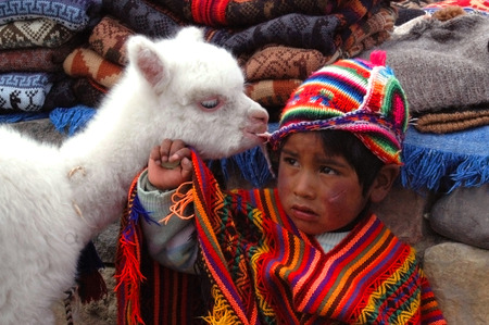 quechua: AREQUIPA, PERU - JANUARY 6: Unidentified Quechua little boy in traditional clothing with baby llama on January 6, 2008 in Arequipa, Peru. The Quechua are a diverse indigenous ethnic group of the Andes. Editorial