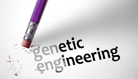 genetic engineering: Eraser deleting the concept Genetic Engineering
