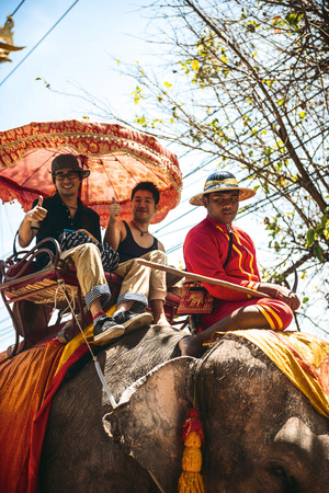 ajutthaya: AYUTTHAYA, THAILAND - January 2: Tourists on an elephant ride tour of the ancient city on January 2, 2014 in Ayutthaya, Thailand