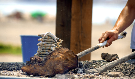 coal fish: Sardines on a skewer firewood at the beach in Malaga, Spain