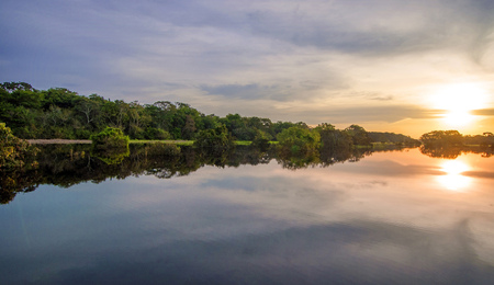 amazon rainforest: River in the Amazon Rainforest at dusk, Peru, South America Stock Photo