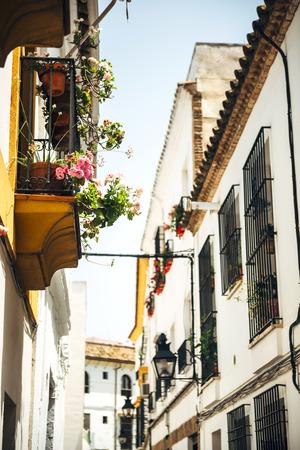 jewish houses: Street of jewish quarter in Cordoba, Spain Stock Photo