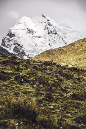 snow covered mountain: Beautiful snow covered mountain peak in the Cordillera Blanca range of Huascaran National Park, Peru