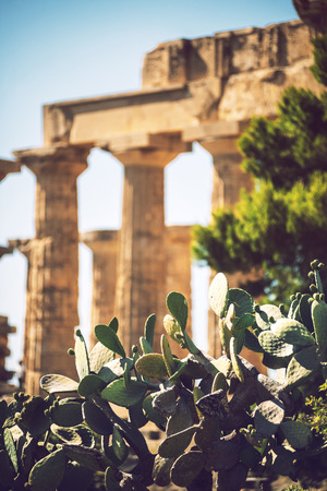 templo griego: Ancient Greek temple in Selinunte, Sicily, Italy. Detail view. Foto de archivo