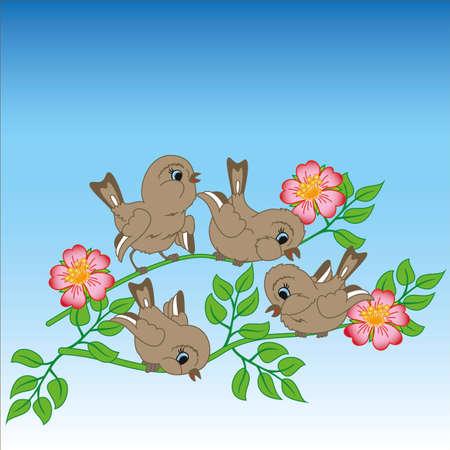 Sparrows on a branch Vector