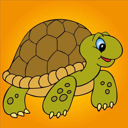 tortoise: Turtle