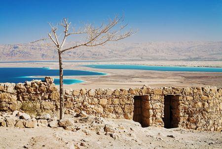 Withered structuur, Masada, Israël Stockfoto - 6297896