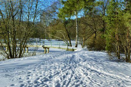 vlonder: Winter landschap met een footbridge