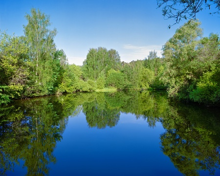 Landscape with trees, reflecting in the water photo