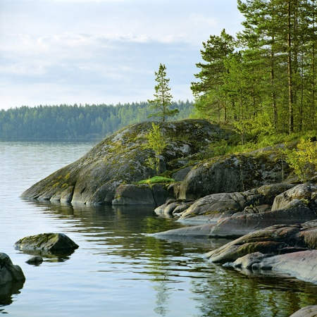 Stony shore of Ladoga lake at morning, Karelia, Russia