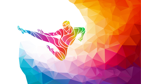KARATE power kick. Martial arts silhouette. Detailed color rainbow vector illustration in polygonal geometric style Çizim