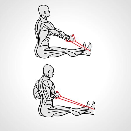 Resistance Band Upper Back Row exercise At home Bodyweight Workout Muscule scheme. Vector illustration eps10