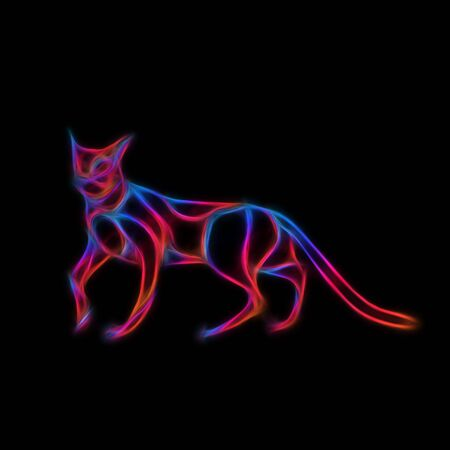 Glowing neon effect Cats club sign. Illustration on black background