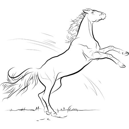 drawing black and white horse jump, vector illustration
