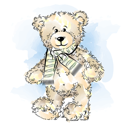 beloved: Drawing Teddy Bear with scarf. Color vector illustration