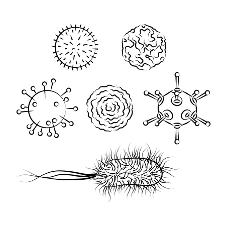 Influenza viruses and E coli Bacteria. Black and white vector illustration. Isolated on white background