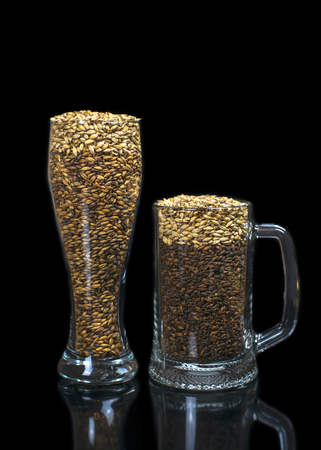 conceptual photo simulates beer from dark and light malt in a beer glass
