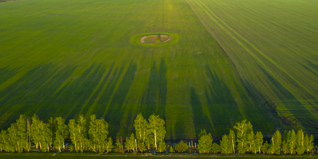 Spring fields, long shadows from landings at sunset from the quadrocopter