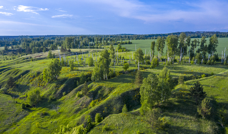 summer landscape with a birds eye view, fields, ravines and birch trunks.