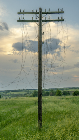 Old wooden Telegraph pole with cut electrical wires on sunset background