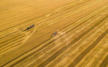 pole pszenicy, kombajn usuwa pszenicę, widok z góry quadkoptera Zdjęcie Seryjne
