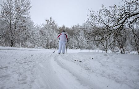 A woman in a white tracksuit running on skis on the track laid in the woods Zdjęcie Seryjne