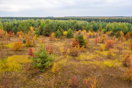 Aerial photography with quadrocopter autumn colorful forest, colorful bright caps of trees from a birds eye view
