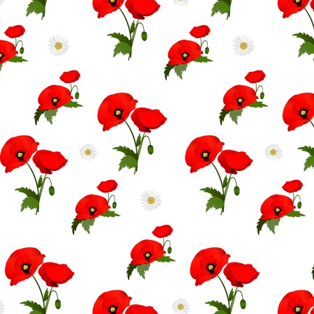 chamomile: Seamless pattern with chamomile and poppies flowers. Vector illustration