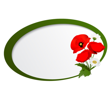florescence: white background with chamomile and red flowers poppies