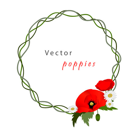 fields of flowers: white background with chamomile and red flowers poppies