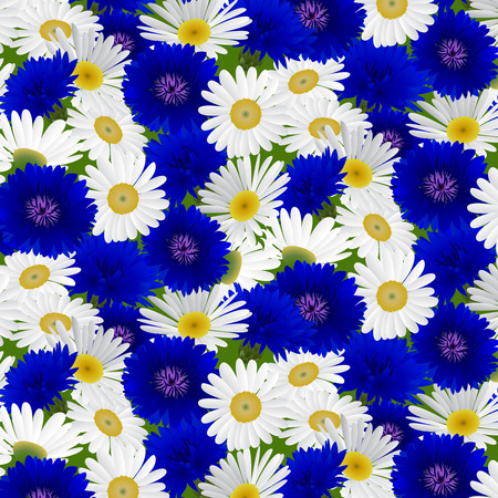 chamomile: Seamless pattern with flowers chamomile and cornflowers . Vector illustration Illustration