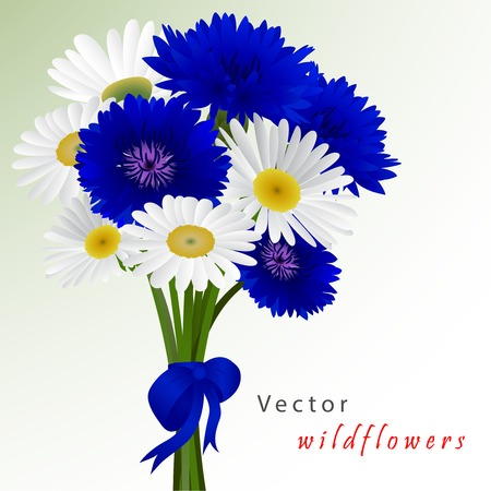 single flower: Template card for greeting, invitation, wedding, birthday, Easter with flowers chamomile and cornflowers Illustration