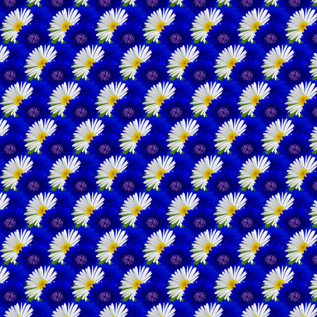 cornflowers: Seamless pattern with flowers chamomile and cornflowers . Vector illustration Illustration