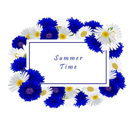 chamomile: Vector white background with flowers chamomile, cornflowers Illustration