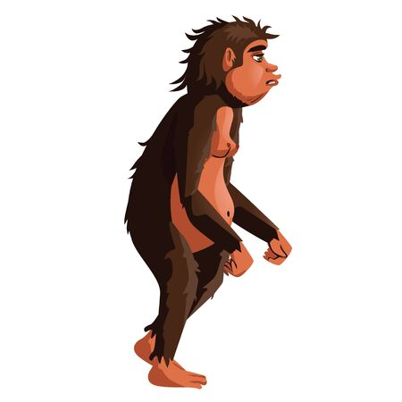 Ancient monkey or homo erectus, human ancestor cartoon vector illustration. Tailless great ape, primates, one of stages in Darwin evolutionary theory, isolated on white background
