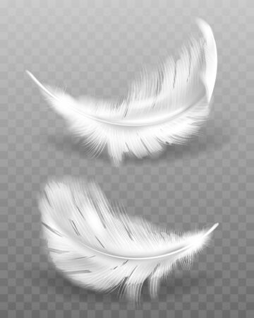 White fluffy feather with shadow vector realistic set isolated on transparent background. Feathers from wings of birds or angel, symbol of softness and purity, design element Ilustración de vector