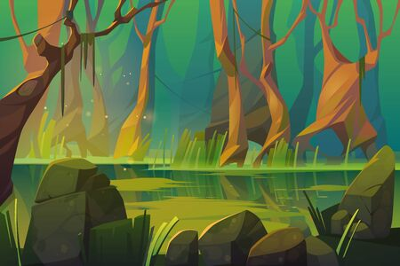 Swamp in tropical forest, fairy landscape with marsh, trees trunks, bog grass and rocks. Vector cartoon illustration of wild jungle, rain forest with river or swamp Vektorgrafik