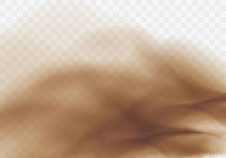 Desert sandstorm, brown dusty cloud or dry sand flying with gust of wind, big explosion realistic texture vector illustration isolated on transparent background  イラスト・ベクター素材