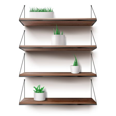 Wooden shelves hanging on ropes with plants in ceramics pots. Front racks on white wall background. Interior design element for room decoration, home ledges furniture, Realistic 3d vector illustration