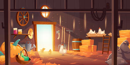 Barn on farm with chickens, straw and hay. Vector cartoon interior of old wooden shed with hen nests, haystack, fork, garden tools, bags and pumpkin. Rural barnhouse for storage harvest