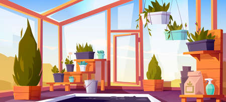 Greenhouse interior with potted plants on shelves. Empty winter garden, orangery with glass walls, windows, roof and stone floor, place for growing flowers, inside view. Cartoon vector illustration
