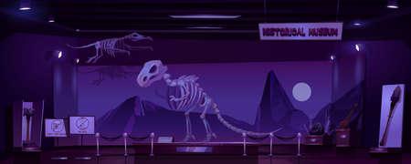 Historical museum with dinosaur skeleton and archeological exhibits at night. Vector cartoon interior of empty dark room of exhibition with prehistoric animals and primitive tools of caveman Иллюстрация