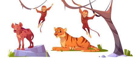Cartoon wild animals tiger, monkeys and hyena, jungle inhabitants predators and herbivorous in zoo park or safari outdoor area. Beasts in fauna isolated on white background 矢量图像